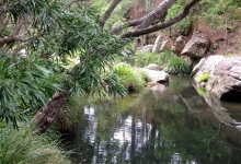 Logan River by K. Love 2015. Commonwealth of Australia 2015 cc by 3-0