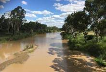 Maranoa River near Mitchell QLD Credit: J. Constable, 2015 Commonwealth of Australia 2015 cc by 3-0