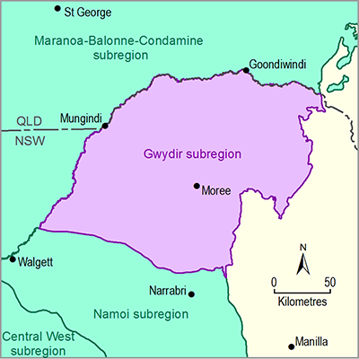 Thumbnail of the Gwydir subregion