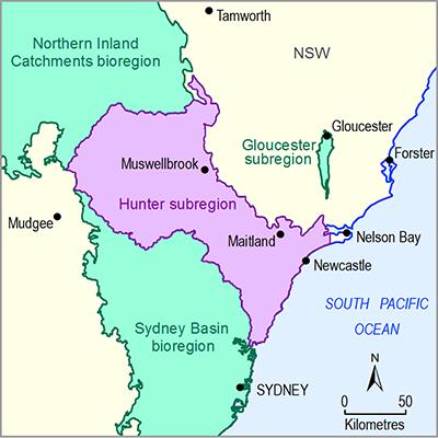 Thumbnail of the Hunter subregion